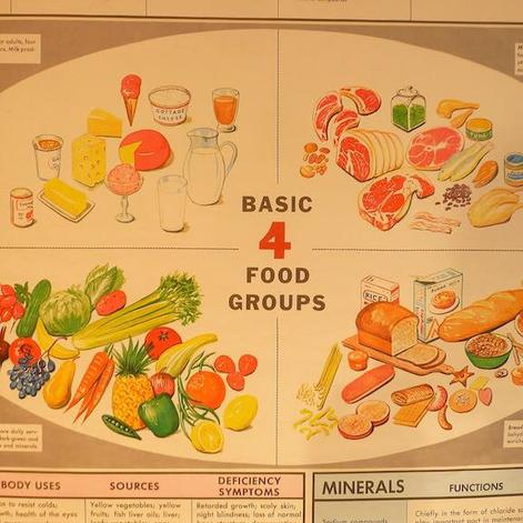 Cardio 1 the 4 basic food groups forumfinder Image collections