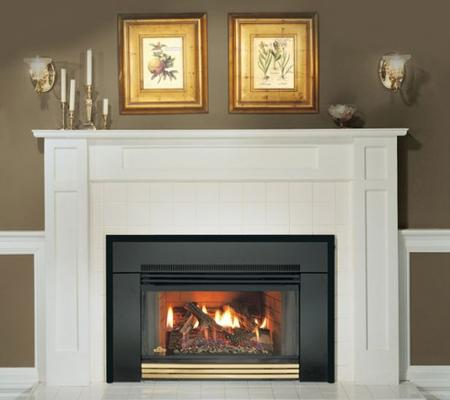 GAS FIREPLACE TUNE UP, INSPECTION AND CLEANING