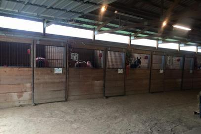 Triple M Stable, Council Bluffs, IA- Indoor Stalls
