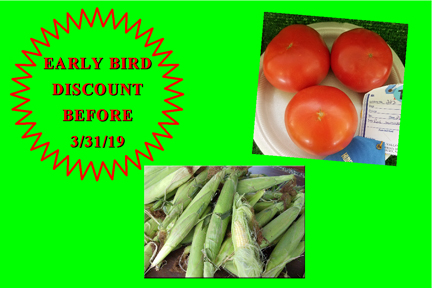 Central Valley Farm - Fruits and Vegetables, Food, Fresh Produce