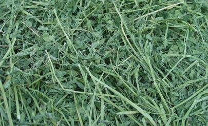 Alfalfa hay is 2 tie or 3 tie bales