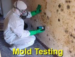 Mold Testing Virgin Islands