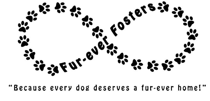 FurEver Fosters
