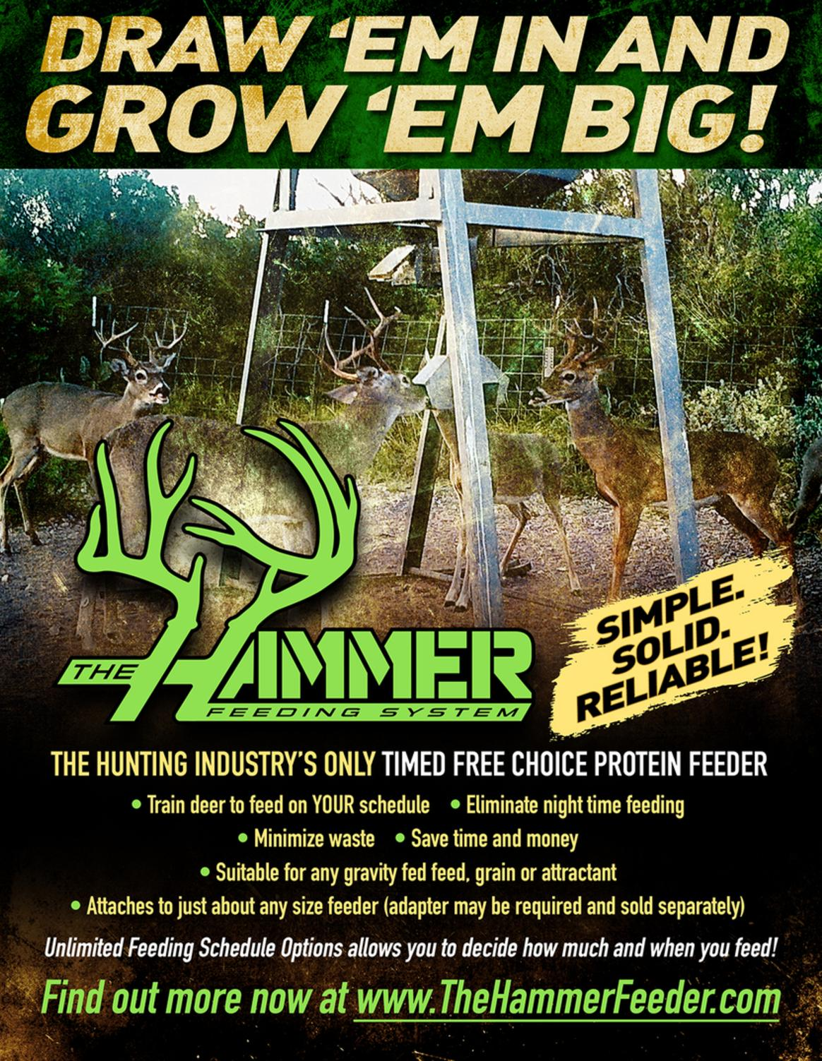 The Hammer Feeding System - timed protein feeders
