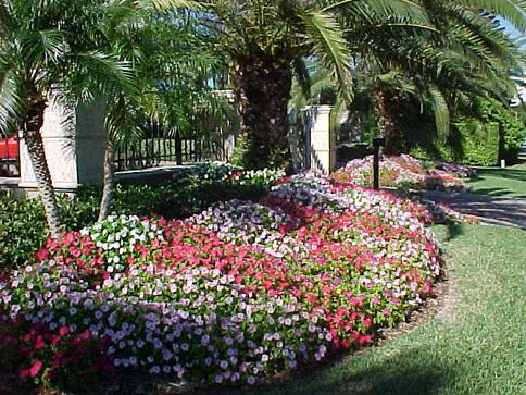 LOCAL FLOWER BED TREATMENT RGV HOUSEHOLD SERVICES