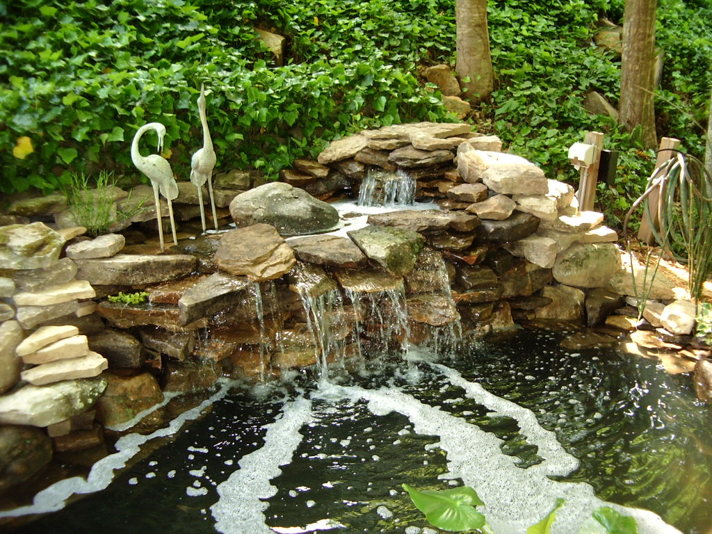Fish Ponds Designs Kol koi pondscapes fish pond construction fish pond design pond workwithnaturefo