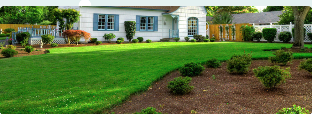 Beautiful lawns and gardens in Oakville