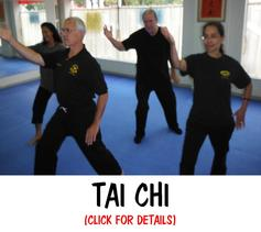 MARTIAL ARTS TAI CHI CLASSES METUCHEN EDISON