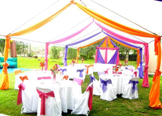 Fushia Purple And Orange Backyard Quince