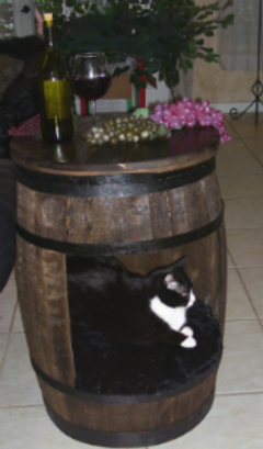 Wine Barrel Themed Cat Furniture