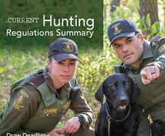 Hunting Regulations and Summary Guidebook