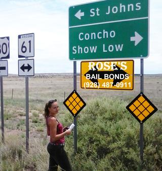 bail bonds bail bonds bail bonds show low arizona