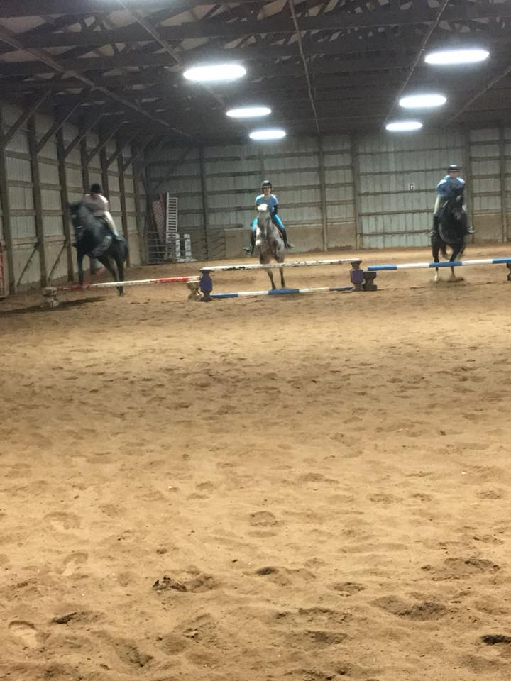 Horse Boarding Facilities, English Riding Lessons - Newstead
