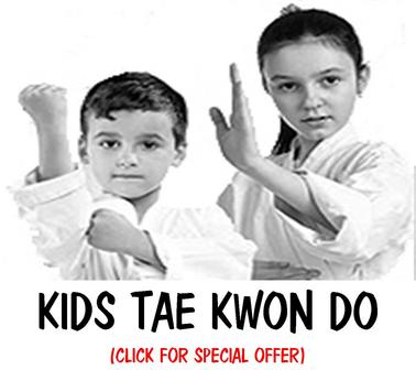MARTIAL ARTS TAE KWON DO FOR KIDS METUCHEN EDISON