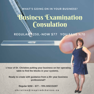 Business Examination Consultation
