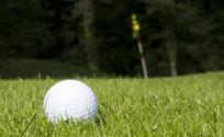 link to golf course descriptions