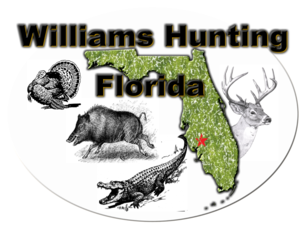 Hog Hunting Trips in Florida
