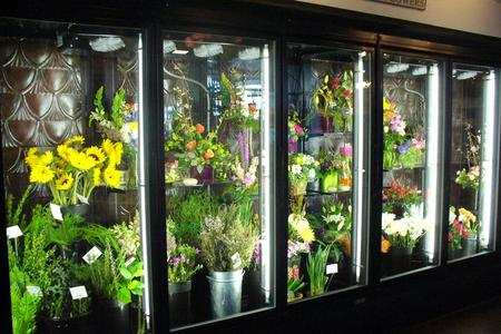 Flower Cooler, Floral Display Cooler, Flower Refrigerator