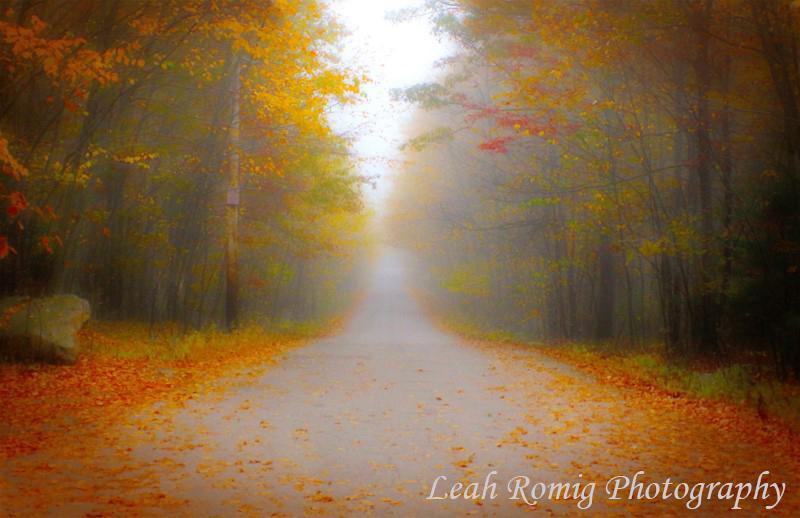 Leah Romig Photography