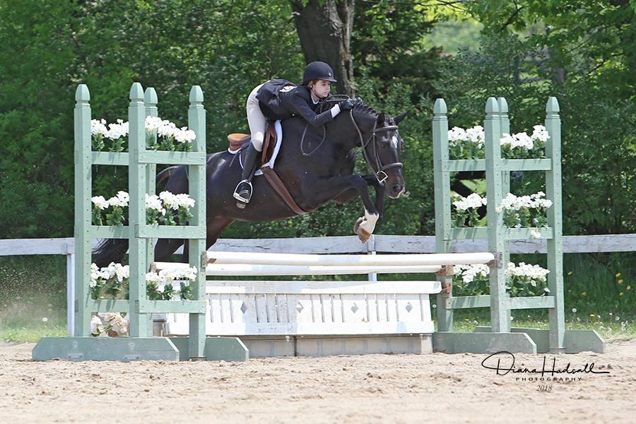 Horse Riding Lesson, Horse Training - Blackstone Stables