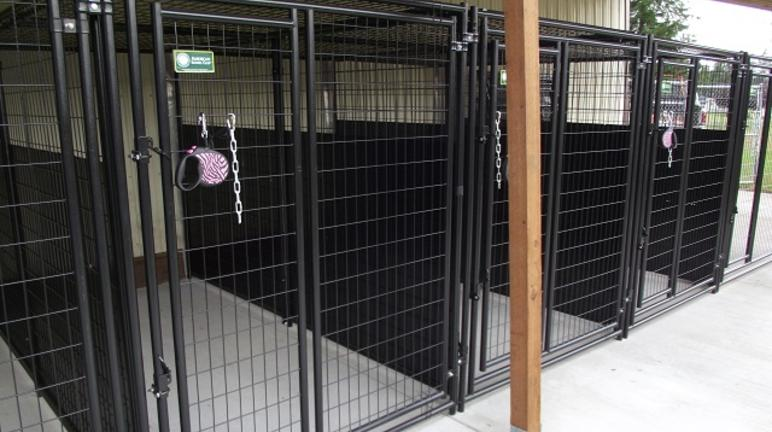 Lucky Dog boarding kennels
