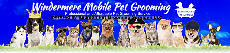 Pet Grooming Equipment Windermere