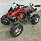 Kids Atv, Pit Bikes And Utvs - East Central Motorsports