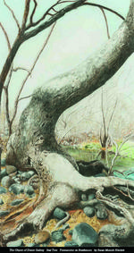 """Seal Tree"" Susan Munich Henkels: nature on strathmore"