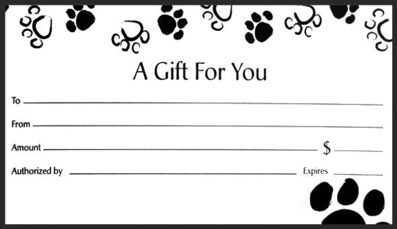Gift certificate for Dental gift certificate template