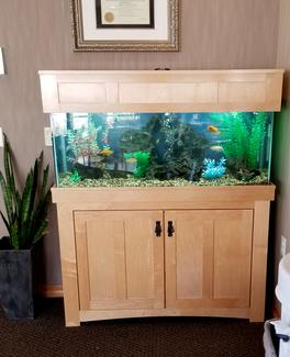 custom fish tank for home in milwaukee
