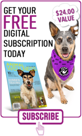Animal Wellness FREE Digital Subscription