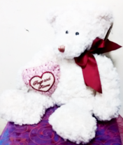 White 14 inch Hugs and Kisses Teddy Bear | Gifts