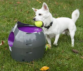 Automatic Ball Launcher with dog feching tennis balls