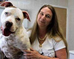 Luvabull Dog Rescue