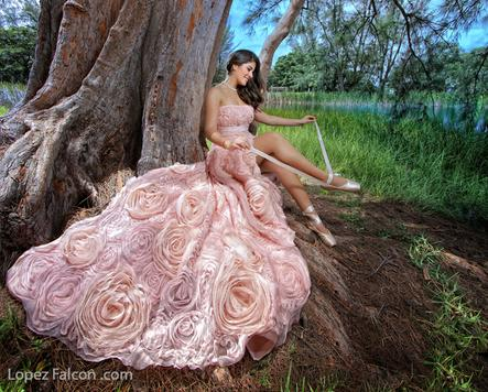 quinces dresses miami quinceanera dress for rent