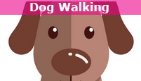katie's pet services - dog walker - dog walking - dog walking walker brighton kemp town