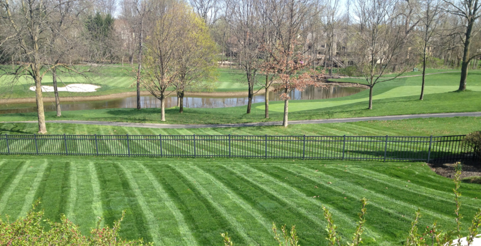 Ryan's Landscaping, Dublin Ohio, Powell Ohio, Lawn Care, Patio, Firepit, Fertilization, Irrigation, Landscape, Annual Color, Snow Removal, Lawn mowing, Spring Clean Up, Mulching, Annual Color, Perennials, OCNT, Landscape Lighting, LMN, Drainage, Leaf Removal