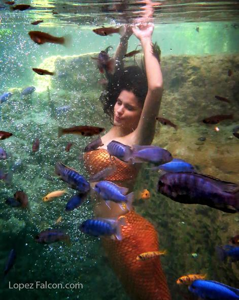 miami mermaid sirena photography Quinceaneras Mermaids