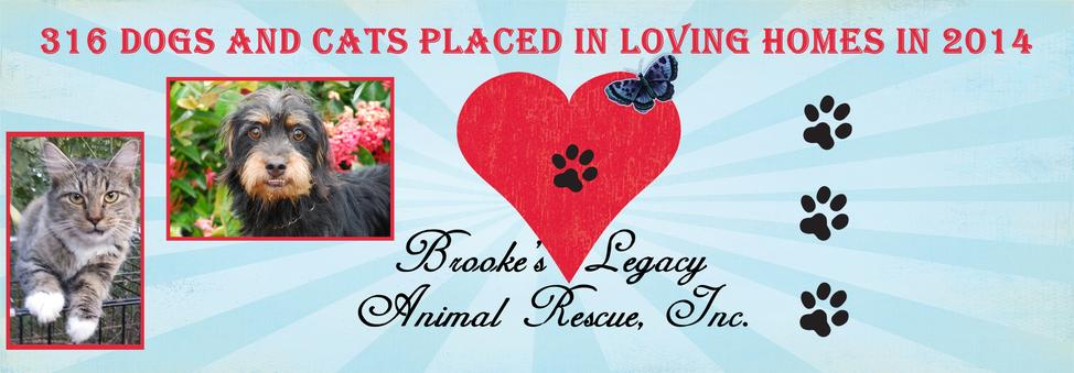 Brooke's Legacy Animal Rescue