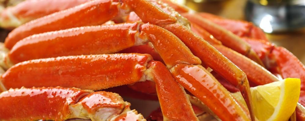 m&m seafoods