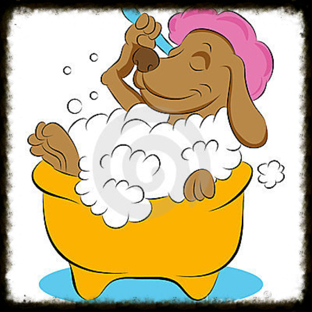 Do it yourself dog wash when you use the do it yourself we charge 12 price for nails 450 for small and medium dogs and 500 for large this is the price when you use the solutioingenieria Gallery