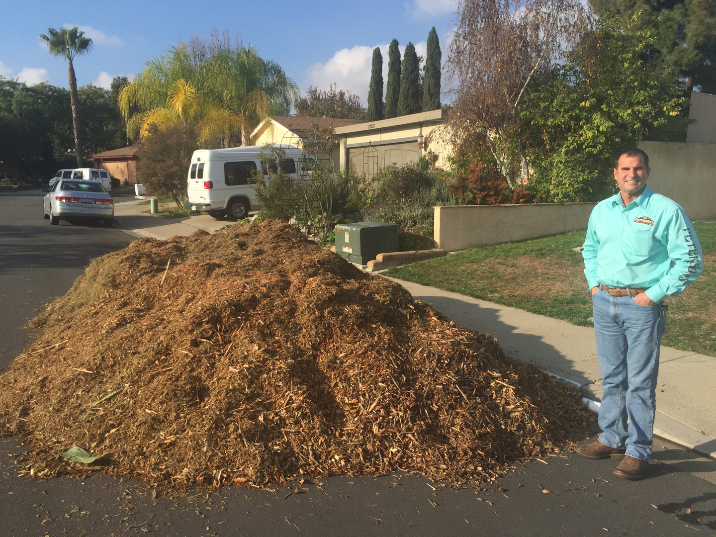 What's the white stuff growing in my wood chips? ********* - Free Woodchips
