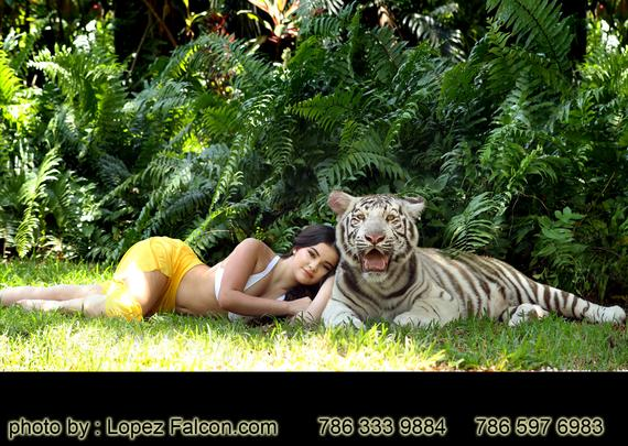 Quinceanera with Tiger at Secret gardens Quinces with tigers photo shoot
