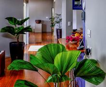 Cook Islands Real Estate residential property for sale image