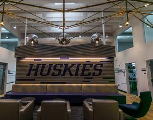 Washington Huskies - Hanging light fixture