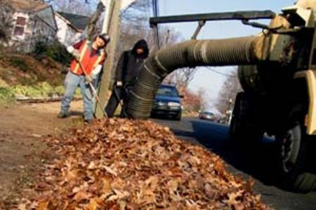 Local Leaf & Yard Waste Drop Off Service in Lincoln NE | LNK Junk Removal