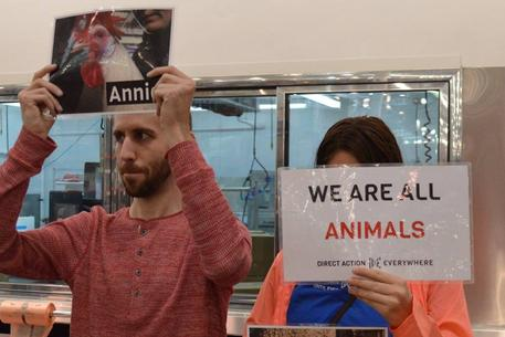 we are all animals animal liberation