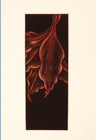 Printmaking Artist Inflorescence