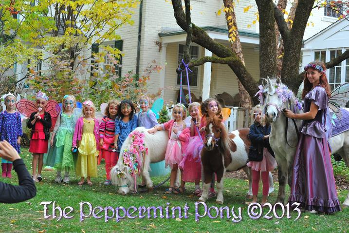 posed picture of many small fairies with unicorn and mini horse in front yard