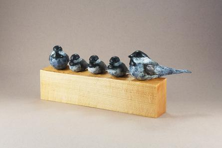 Bronze Chickadee family sitting on a piece of Maple